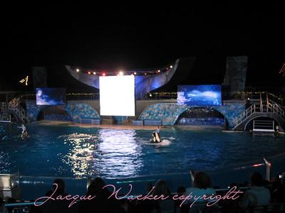 december 6 & 10. 2009 sea world with gigi & p pops