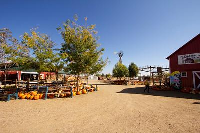Anderson Farms 2012