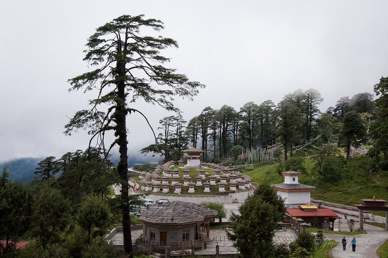 Bhutan-Punakha-8111.jpg