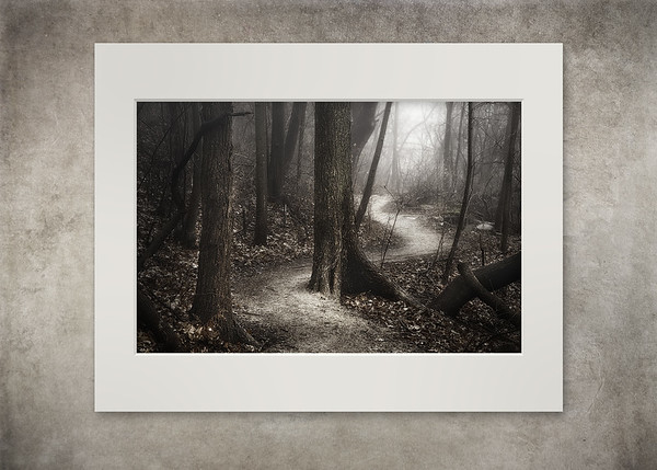 The Foggy Path - $20