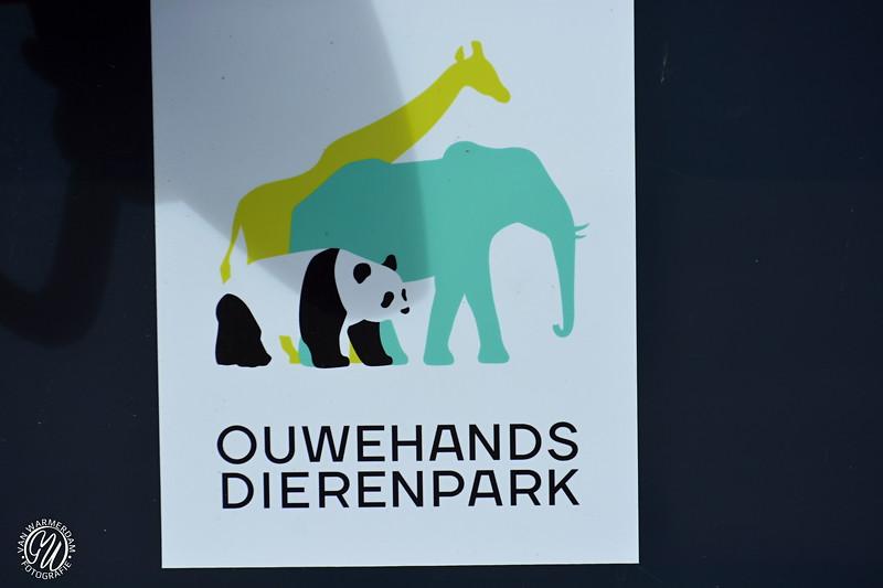20180909 Ouwehands dierenpark GVW_8839.jpg