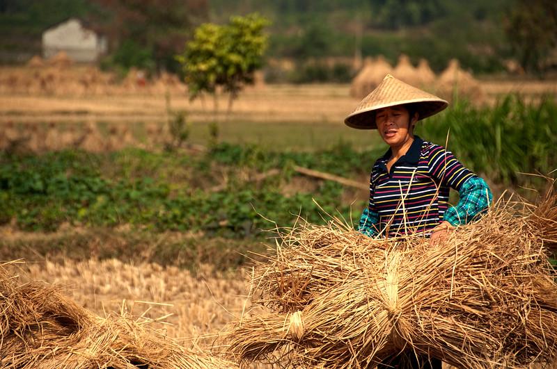Farmer, Yangshuo, China