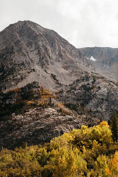 Tioga Canyon III