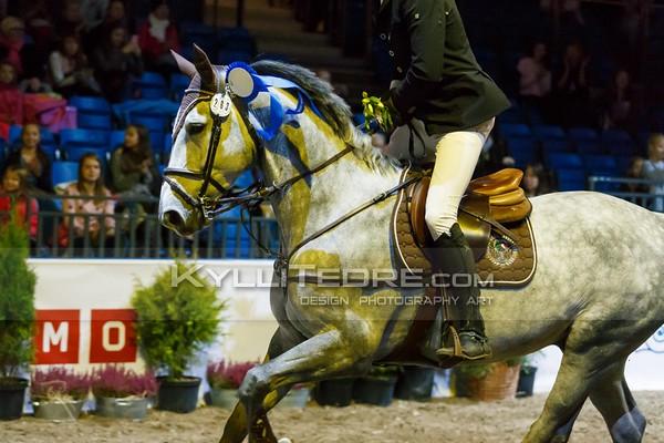 Tallinn International Horse Show 2016