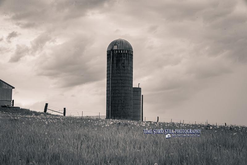 KC Landscape-82.jpg