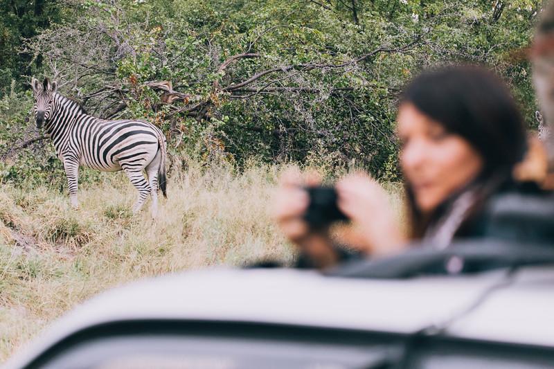 24 Africa.jpg