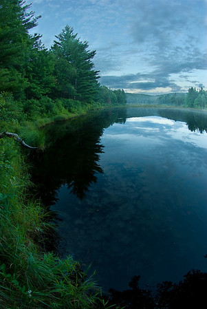 Savoy State Forest