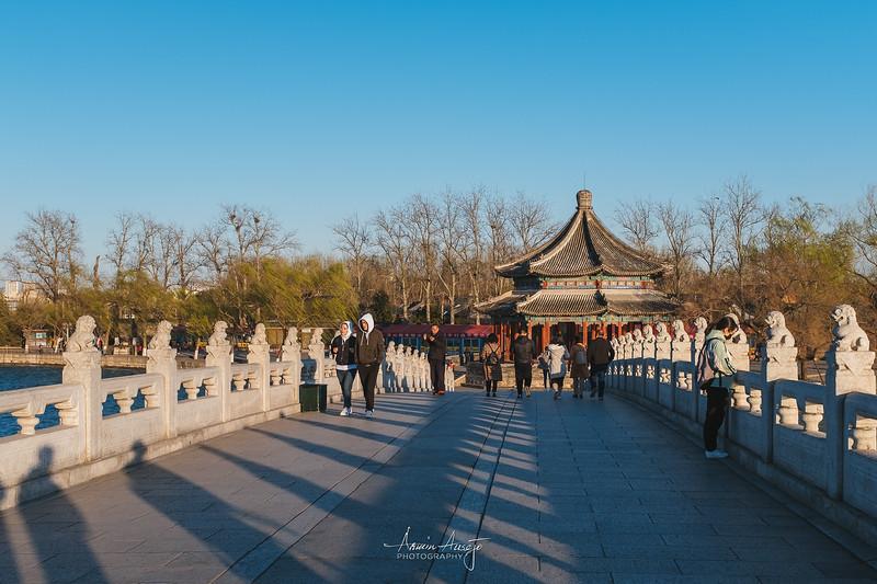 BeijingMarch2019-52.jpg