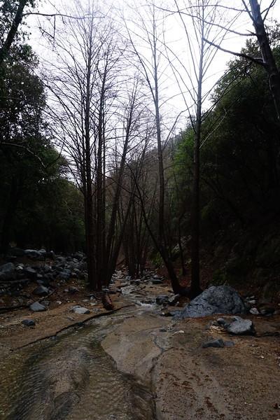 20160218002-Gabrielino Trail Scouting.JPG