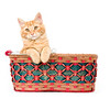 A yellow cat sitting in a colorful basket on a white background