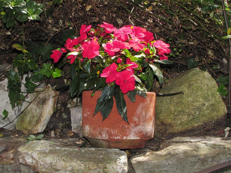24-flowerpot_4725.jpg