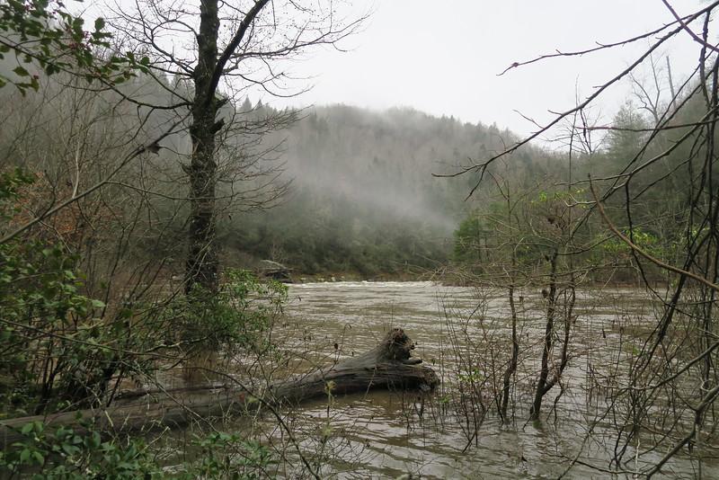 Chattooga River - Opossum Creek Falls Trail
