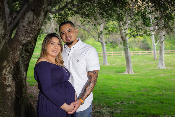 Sulie and Jo         Maternity Session