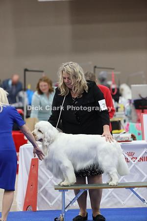 Puppy Dog 15-18 Months