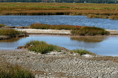 Massachusetts: Parker River National Wildlife Refuge