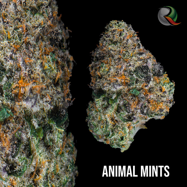 animal mints.jpg
