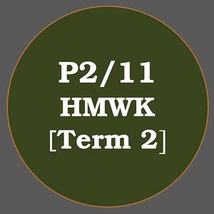 P2/11 HMWK T2