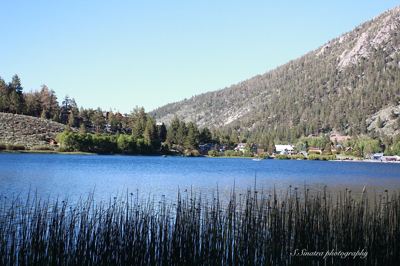 Gull Lake, 00011.jpg