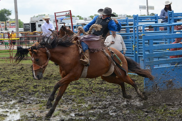DuPage County Fair 2016 - Rodeo