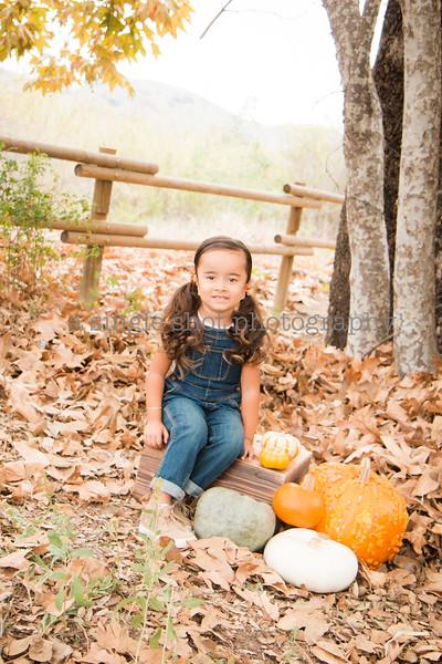 Cavanaugh: Fall Minis