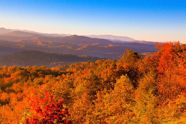Autumn in the Smoky Mts.