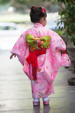 YT  Shichi Go San