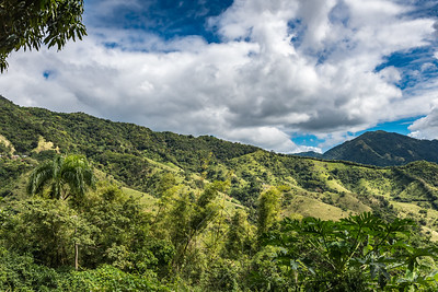 Tropical mountain landscape with palms and green vegetation