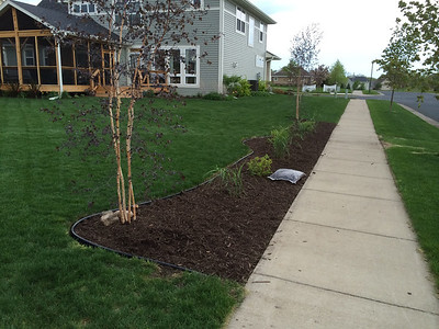 2014 Landscaping and Garden