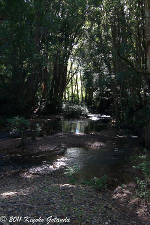 Nana Creek
