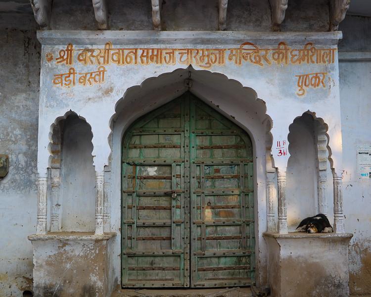 India-Pushkar-2019-6971.jpg