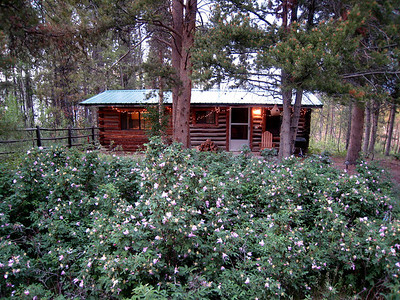 "Moose River Ranch -- ""Bear Den"" Cabin"