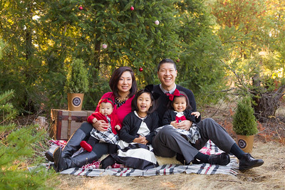 Tung Family 2015