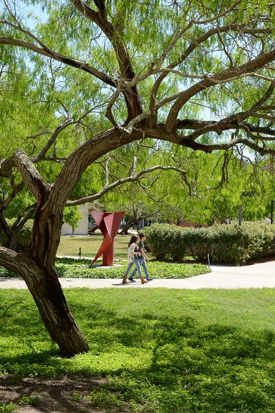 students-enjoy-the-spring-weather-as-they-walk-to-class_13896169823_o.jpg