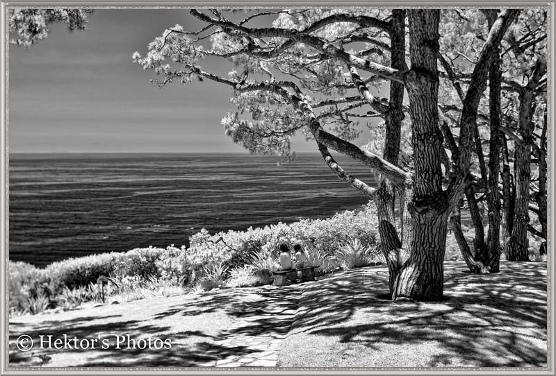 Wayfarers Nikon 28-66.jpg