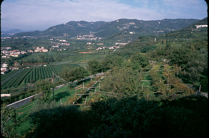 Italy1_015.jpg
