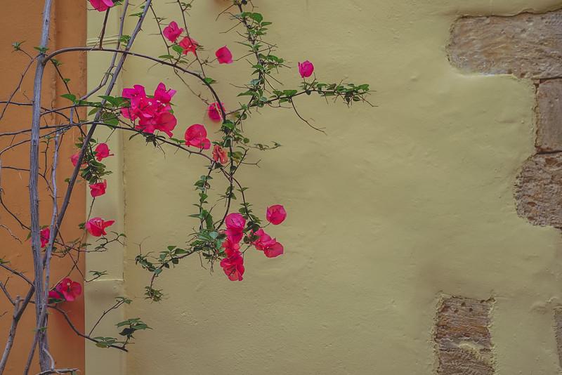 Crete 06.17-283.jpg