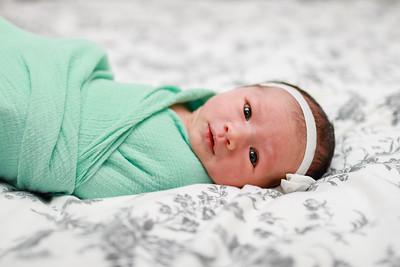 Colette: Newborn