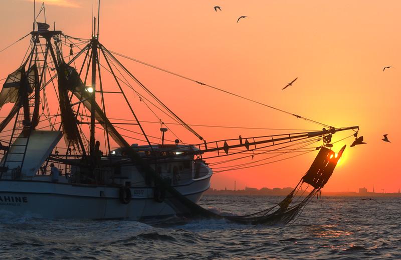 MMGINC Shrimp Boat Charleston Harbor_5.jpg
