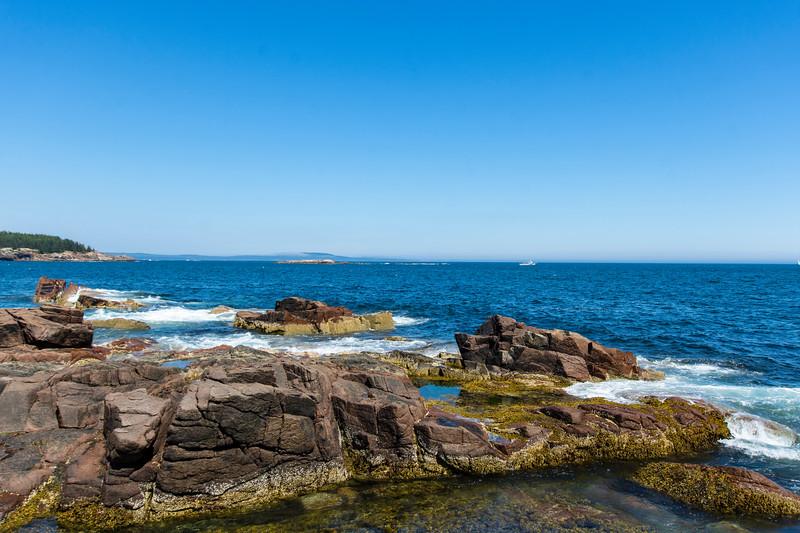 Rocky-shore-acadia.jpg