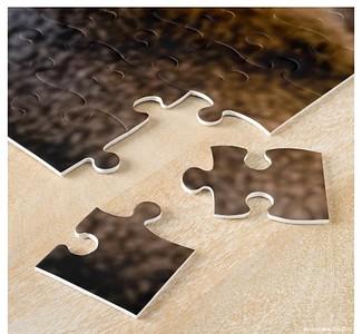 Jigsaws: Set 1 - Animals