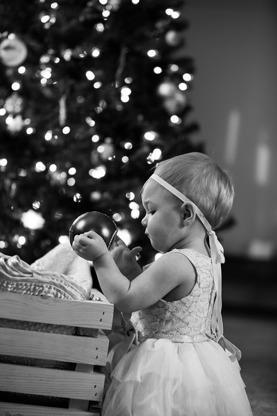 Leah Marie's First Christms 2018 (115).jpg