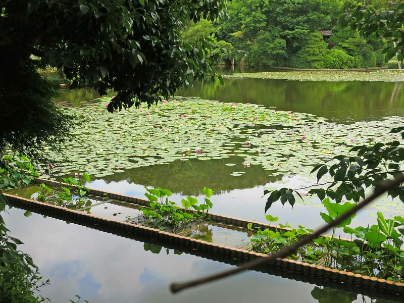 1984 Ryoanji Temple, Kyoto, lily pond.jpg