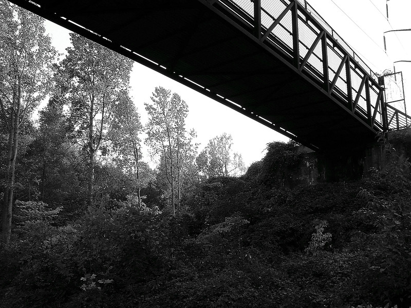020 Highbridge.jpg
