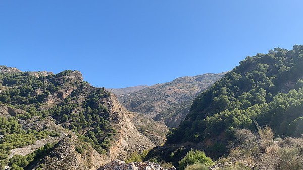 Rock Climbing Niguelas