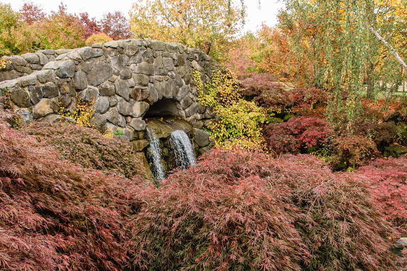 Mayfield Garden - Autumn