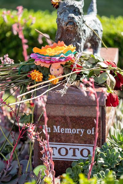Dia de los muertos 2019-39.jpg