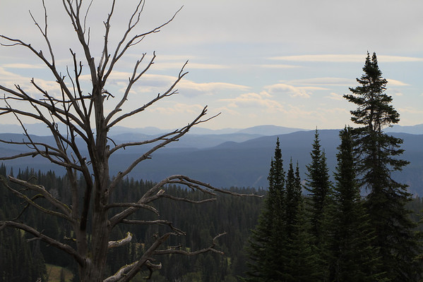 Yellowstone National Park, NE area