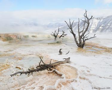 2009 Yellowstone NP vacation