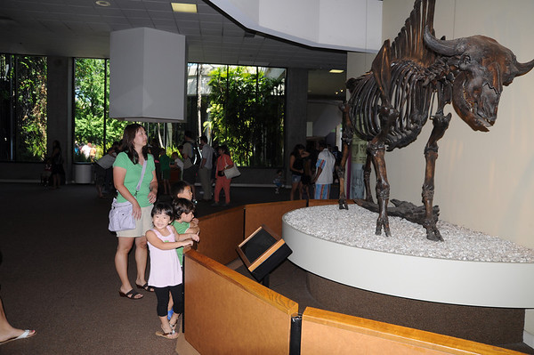 07-18 and 07-19-2010 Tar Pits-Universal