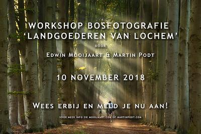 2018-11-10 Workshop bosfotografie (Dutch)